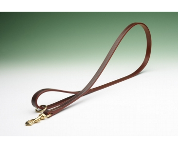 Best Bridle Leather Dog Lead