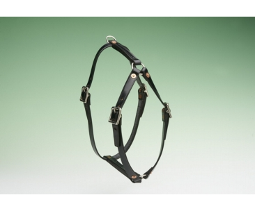 The Karenswood Economy Leather Tracking Harness