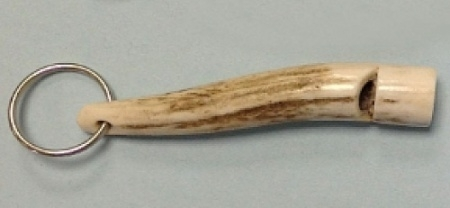 Staghorn Whistle without Pea