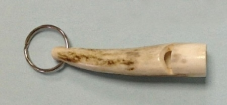 Staghorn Whistle with Pea